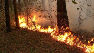 Photo of У низці областей України 17-18 жовтня збережеться надзвичайний рівень пожежної небезпеки