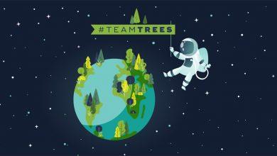 Photo of TeamTrees: зірки YouTube таки зібрали 20 мільйонів доларів, щоб посадити 20 мільйонів дерев