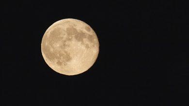 Photo of Який сьогодні, 5 липня, місячний день