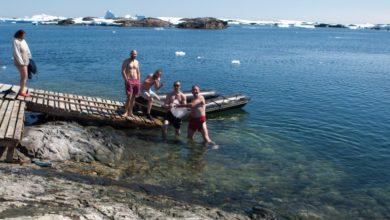 Photo of Як Водохреще з купанням відзначили в Антарктиді: фото