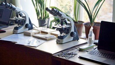 Photo of У Гоголевому виші відкрилась єдина на все місто сучасна лабораторія біології