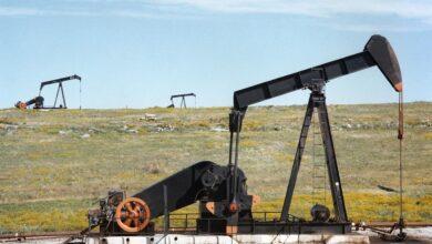 Photo of Ціни на нафту знизилися на 11% всього за п'ять днів: що прогнозують аналітики