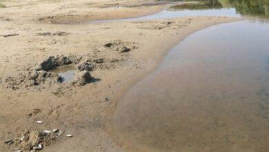 Photo of Знищення природи: екологічна катастрофа на Чернігівщині