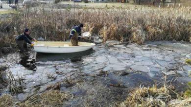 Photo of У Львівській області легковик злетів у озеро, четверо загиблих