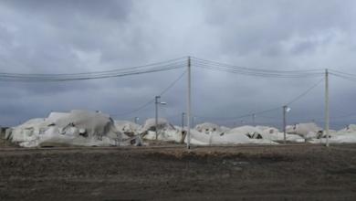 Photo of Погода у Миколаєві: вітер зніс наметове містечко ЗСУ
