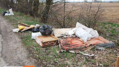Photo of Дорога – не сміттєзвалище!