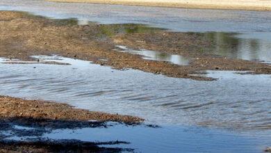 Photo of У річках області дуже низький рівень води