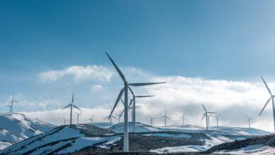 Photo of Відновлювана енергія шкодить планеті