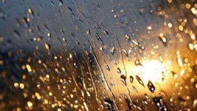 Photo of Погода на завтра: У західних областях України прогнозують дощ