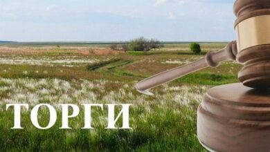Photo of На Ніжинщині більше, ніж 576 державних гектарів виставлять на торги