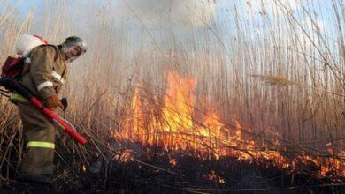Photo of Чернігівщина: за добу – 35 пожеж