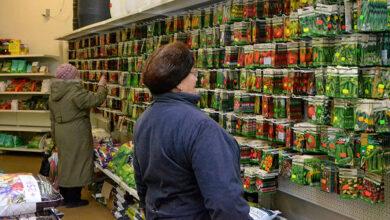 Photo of Чи відкриють у Ніжині продуктовий ринок і насіннєві агромагазини?