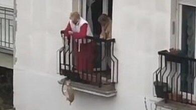 Photo of Дивацтва карантину: жінка вигуляла собаку, спустивши її з балкона на повідку