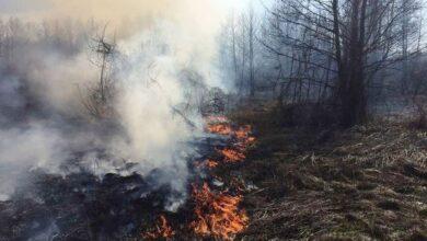Photo of Дві доби – 7 пожеж: на Ніжинщині горів будинок, торф, очерет і суха трава