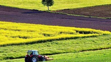 Photo of Як нардепи з Чернігівщини голосували за ринок землі