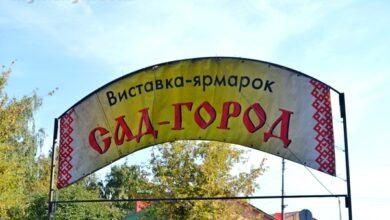 Photo of Ярмарок «Сад-город» на Гоголівській припинено