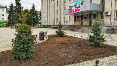 Photo of На площі ім. І. Франка з'явились 3 нових ялини (фотохроніка подій)
