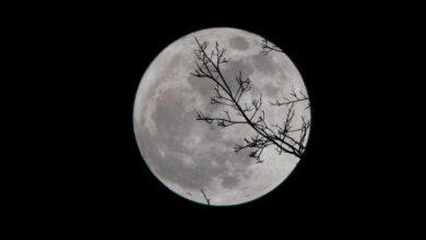 Photo of Місячний календар на вересень 2020: сприятливі дні
