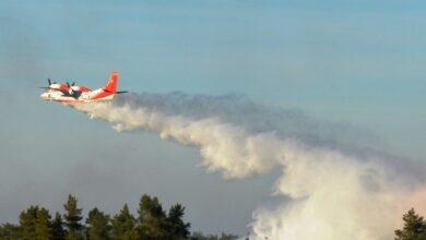 Photo of Ніжинські рятувальники гасили з повітря пожежу на Чернігівщині