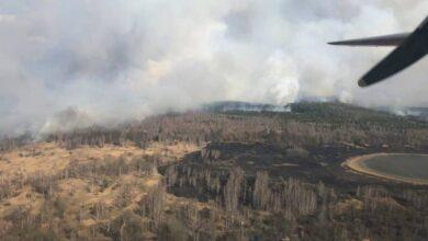 Photo of У Чорнобильській зоні спалахнув ліс: до гасіння залучили рятувальників з Ніжина