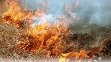 Photo of Пожежі не припиняються: у Бурківці згоріло авто, у Ніжині горить трава