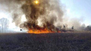 Photo of У Ніжині за спалювання сухої трави штрафують: скільки протоколів склала поліція