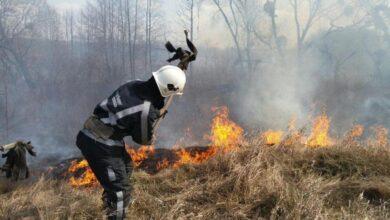 Photo of В усій Україні пожежі через спалювання трави: лише у Києві за добу 42
