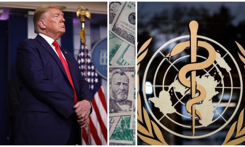 Трамп припинив фінансування ВООЗ – NizhynNEWS