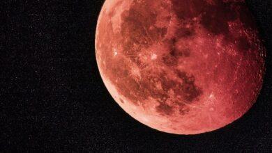 Photo of Місячний календар стрижок на серпень 2020 – рекомендації і застереження
