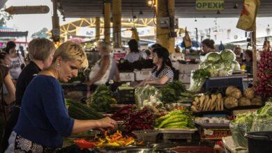 Photo of Українські огірки у Польщі видавали за вітчизняні, щоб привабити покупців