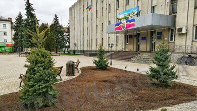Photo of Біля міськвиконкому висадили три колючі красуні