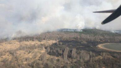 Photo of У Чорнобильській зоні відчуження виникла лісова пожежа