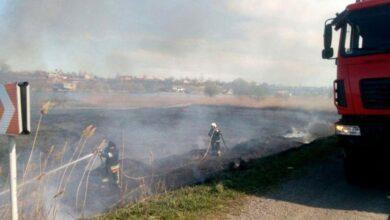 Photo of На Одещині увесь день горить національний природний парк