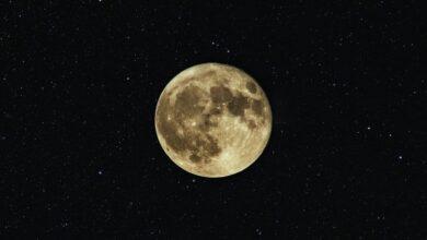 Photo of Який сьогодні, 7 липня, місячний день