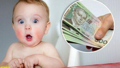 Photo of У Ніжині вже 47 ФОПів подали заяву про виплату допомоги на дітей