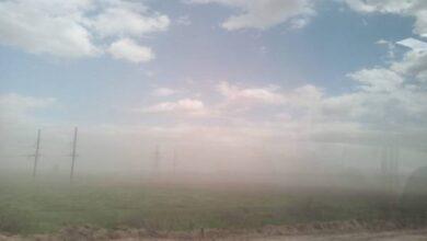 Photo of Наче кінець світу: на Ніжинщині вчергове зафіксували піщані бурі