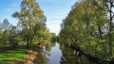 Photo of На Ніжинщині будуть реалізовувати міжнародний екологічний проєкт