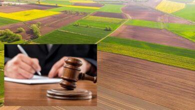 Photo of На Ніжинщині дві земельні ділянки повернули державі