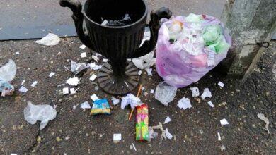 Photo of Ніжинці викидають домашнє сміття в маленькі урни, а собаки розтягують по місту