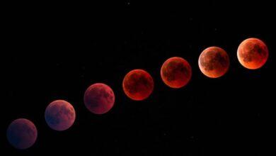 Photo of Переважно сприятливий період – місячний календар на липень 2020