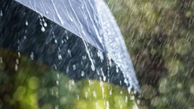 Photo of Сильні зливи та вітер: в Києві погіршилася погода