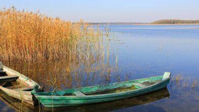 Photo of Тіла шукали водолази: на Одещині ВАЗ зі сплячими рибалками впав у річку