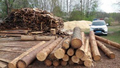 Photo of На Чернігівщині чоловіка судитимуть за крадіжку 65 колод деревини