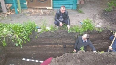 Photo of Що таять шари ґрунту біля садиби Лисянських? Фото