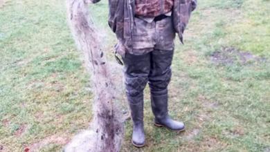 Photo of Рибоохоронний патруль спіймав на озері ніжинця із сіткою
