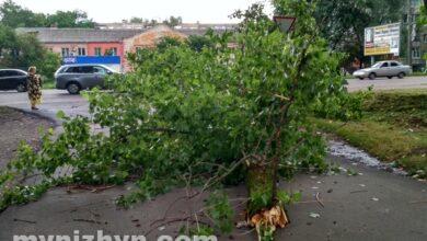 Photo of Що встиг накоїти сильний вітер у Ніжині? Фото