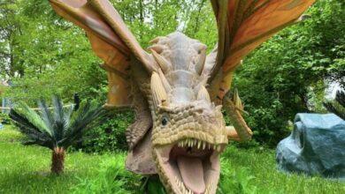 Photo of Дракони, екстрим і зоопарк: як відпочити на ВДНГ