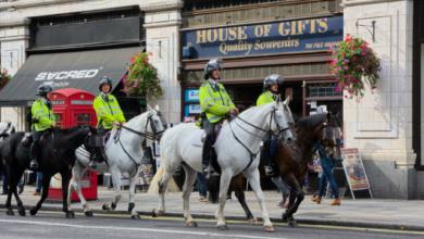 Photo of Демонстранти в Лондоні напали на кінну поліцію: є постраждалі