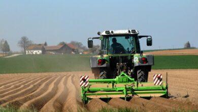 Photo of Аграрії закликають Раду змусити тіньовиків працювати в білу