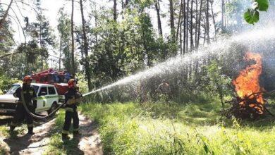 Photo of Як на Ніжинщині вогнеборці та лісівники разом тренувалися